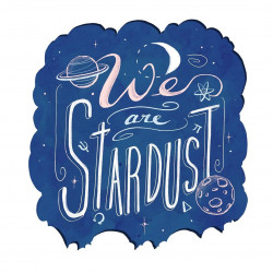 We are Stardust 1